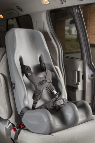 Special Tomato® Soft-Touch® Booster Car Seat™