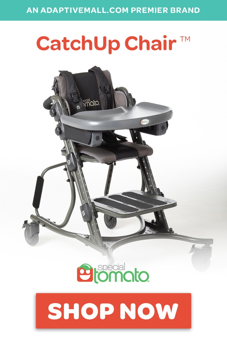 Special Tomato CatchUp Chair